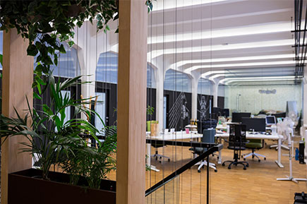 View of empty office with pot plant
