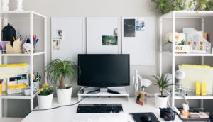 Office desk with indoor plants.